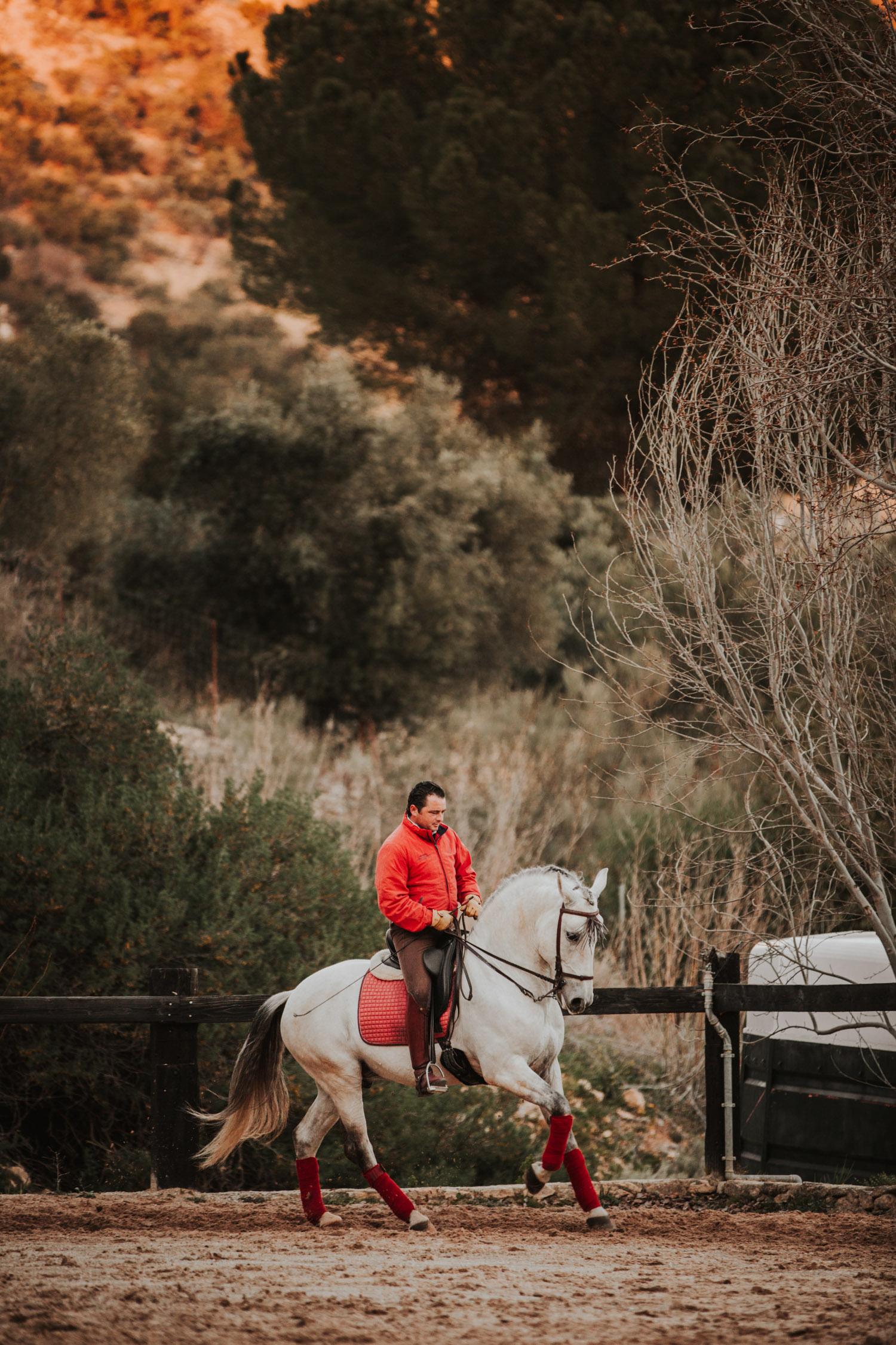 Pferdefotografin Pferdeshooting Pferdefotos Pferdefotografie Workshop Coaching Kurs Bildbearbeitung Photoshop Lightroom Schweiz Tabitha Roth Ronda Spanien Andalusien