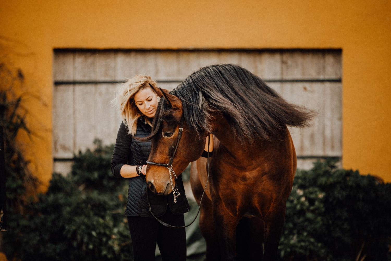 Pferdefotografin Pferdeshooting Pferdefotos Pferdefotografie Workshop Coaching Kurs Bildbearbeitung Photoshop Lightroom Schweiz Tabitha Roth Aargau
