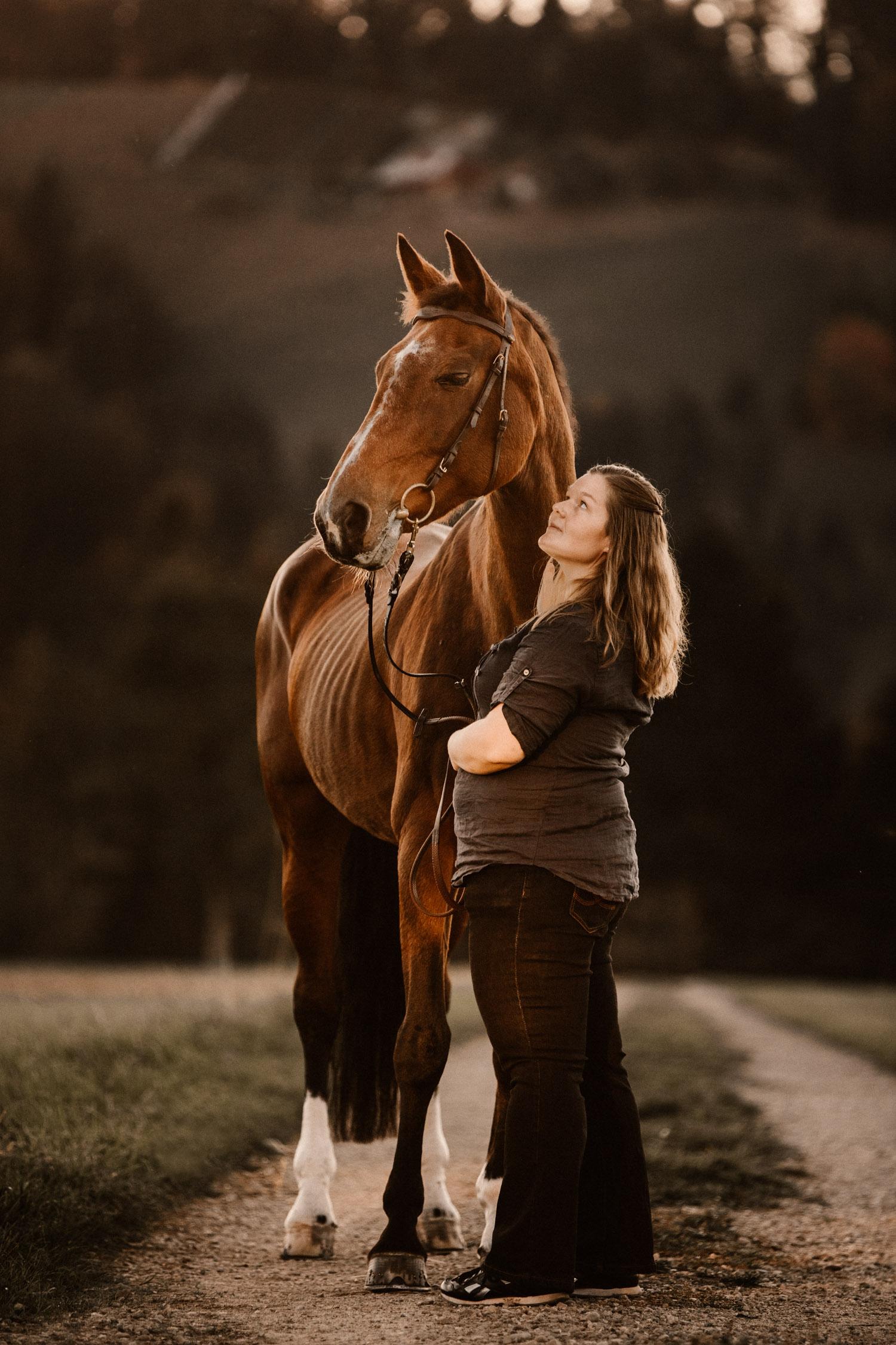 Pferdeshooting in Bern Schweiz Pferdefotografin natürliche Pferdefotos altes Pferd Stute Gegenlicht