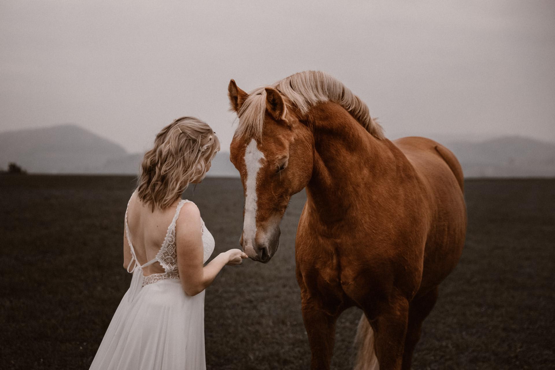 Tabitha Roth Pferdefotografin Schweiz Pferdeshooting Freiberger Hochzeitskleid Braut