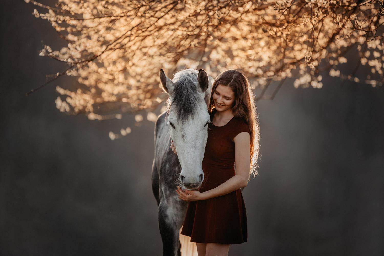 Pferdeshooting Pferdefotografin Schweiz Frühling im Fricktal Gegenlicht Schimmel Pony