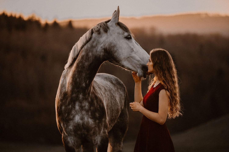Pferdeshooting Pferdefotografin Schweiz Frühling im Fricktal Gegenlicht Schimmel Pony natürlich ungestellt