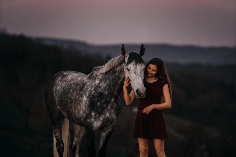Pferdeshooting Pferdefotografin Schweiz Frühling im Fricktal blue hour Schimmel Pony natürlich ungestellt