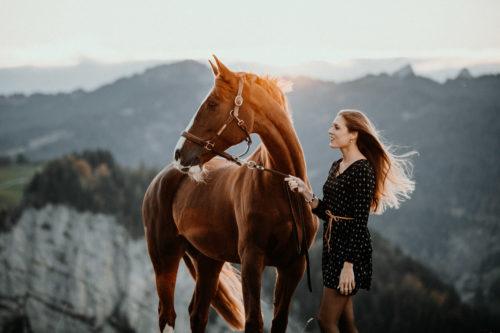 Presets für Pferdefotografie und Hundefotografie Presets for Horse, Dog and Animal Photography Lightroom Photoshop Tierfotografie Bildbearbeitung Filter Vorher Nachher